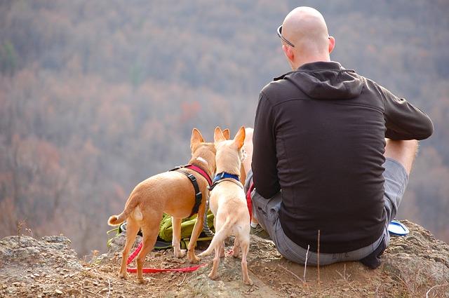 AGA男性と犬